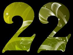 Resultado de imagem para il número 22