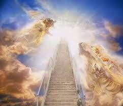Nhà khoa học được Chúa cho thấy thiên đàng