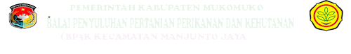Bp3k Air manunto