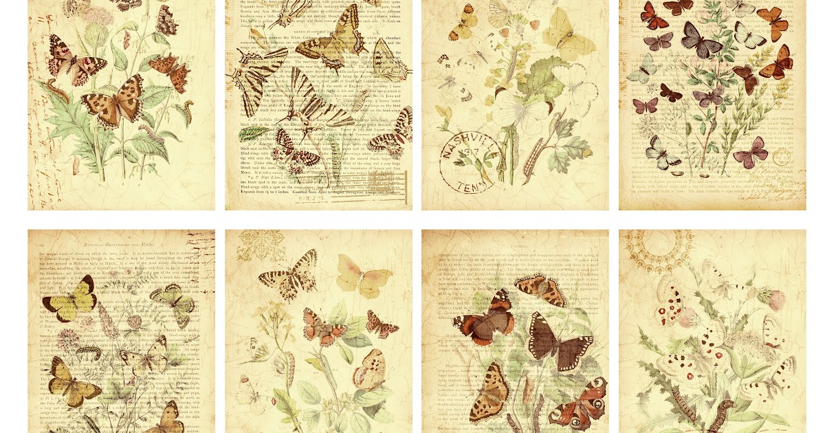 Jodie Lee Designs Free Printable Butterfly Garden Gift Tags
