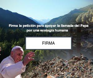 Firme la petición del Papa Francisco