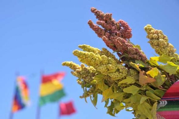 Cereales andinos en la dieta mundial