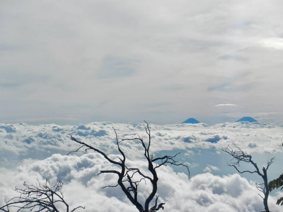 pemandangan gunung slamet