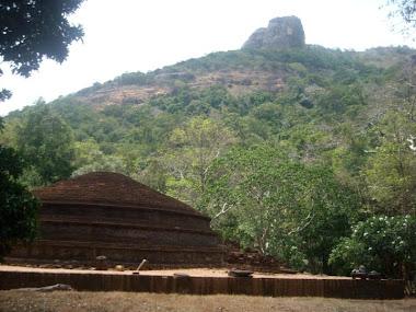 Kaludiya Pokuna in Kandalama