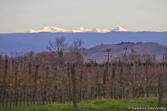 Snow on Mount Ruapehu, pictured from SH2, just south of Clive, Hawke's Bay photograph