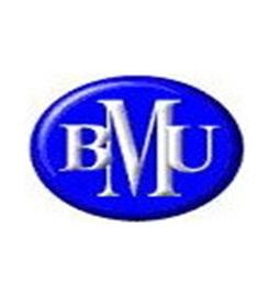 Logo PT BPR Bina Maju Usaha