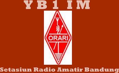 YB1IM