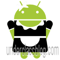SD Maid Pro - System Cleaning Tool 3.1.4.2 Patched APK