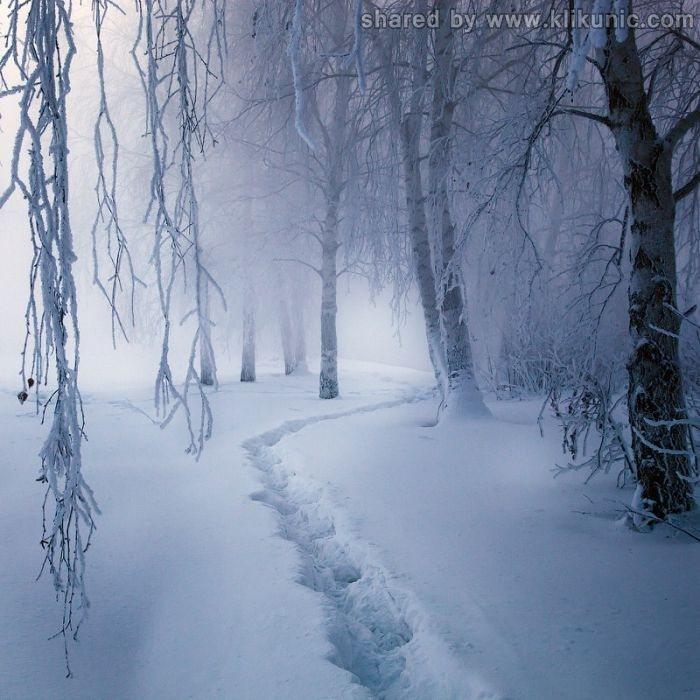 http://1.bp.blogspot.com/-eelFpjSPtPY/TXNbJGb7sTI/AAAAAAAAP98/B_a93Gh1DKk/s1600/winter_14.jpg