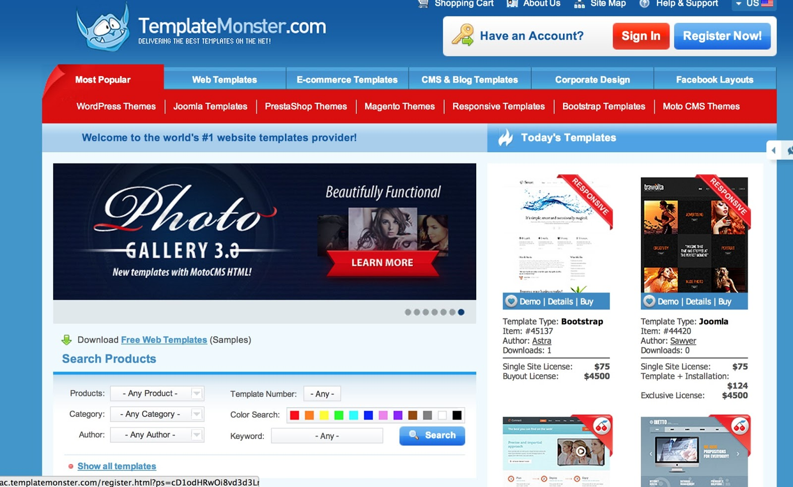 Selecting A Readymade Website Theme or Creating a Uniuque Theme