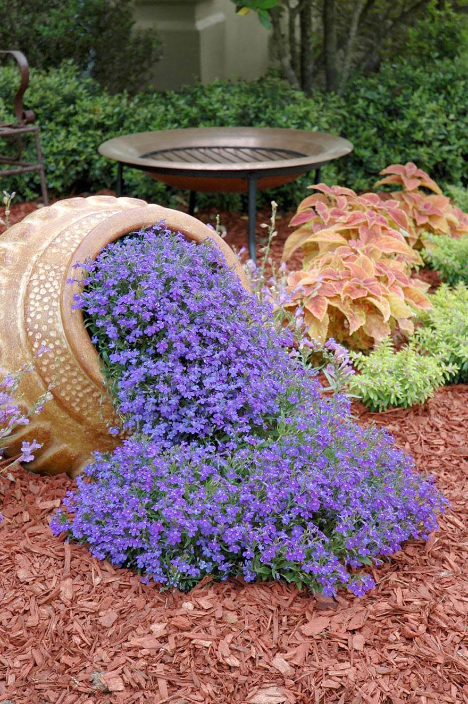 Muitas vezes Levepedia: 15 vasos de flores derramando flores em seu jardim  TQ21
