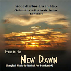 Praise for the New Dawn, Vol. 1