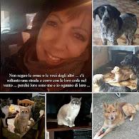 Blog di Antonella Riviello