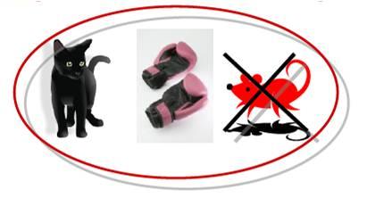almendra mi blog de ELE Gato con guantes
