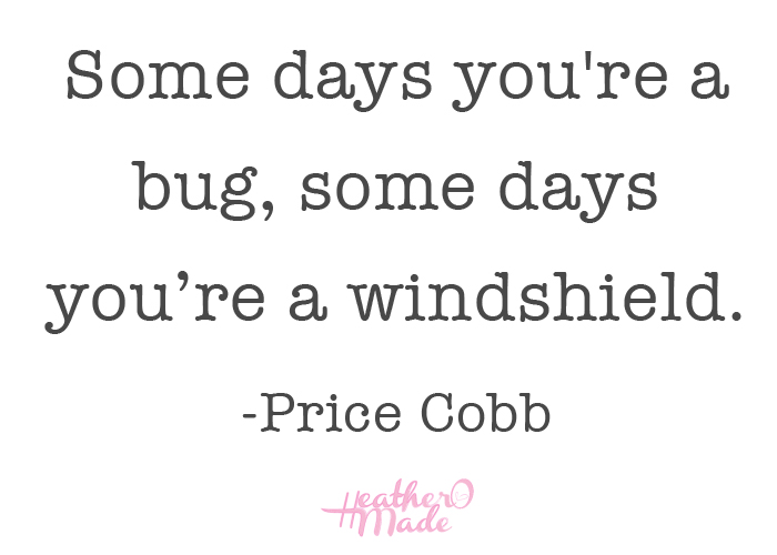 Some days you're a bug, some days you're a windshield. -Price Cobb