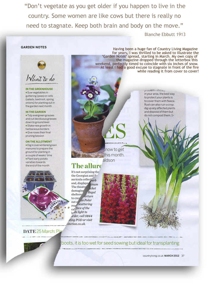 Mary woodin country living for Country living gardener magazine website