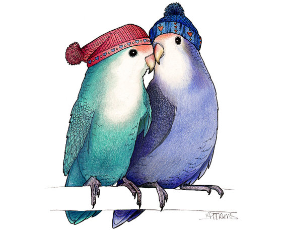 Alice Tams lovebirds in bobble hats