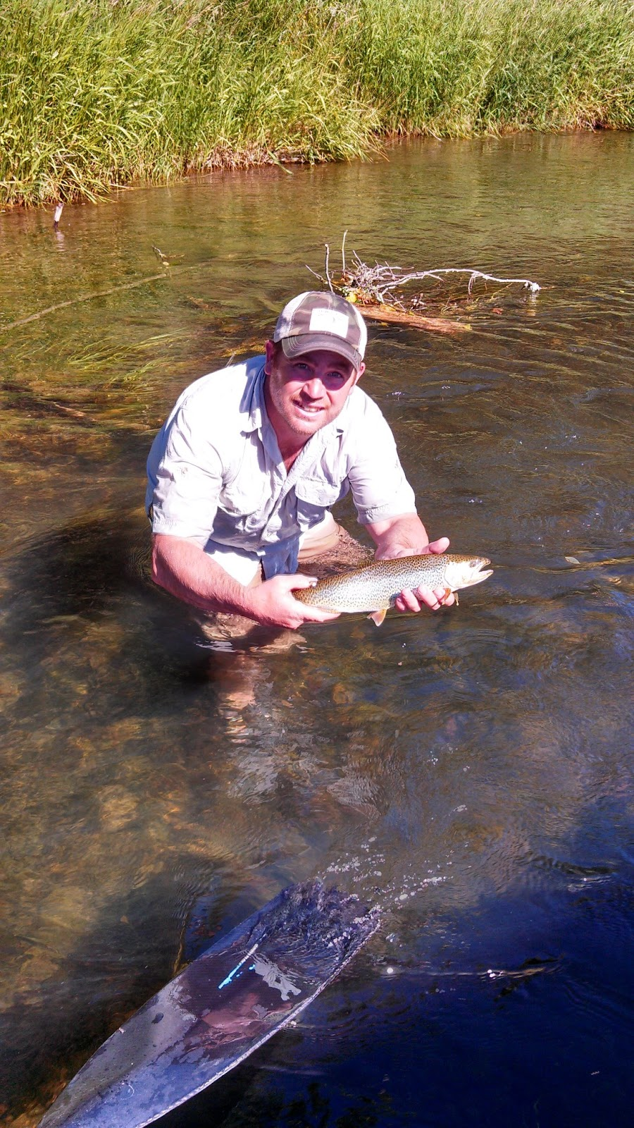 Rogue river and southern oregon fly fishing guide june 2013 for Rogue river oregon fishing