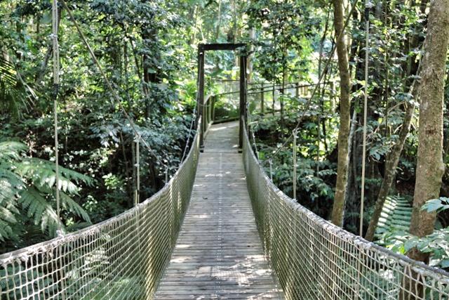 Senderos y puentes en el Parque de Les Mamelles