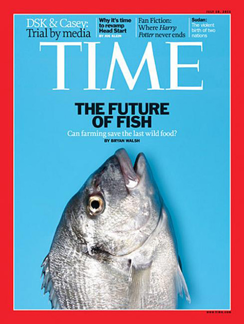 Time Fish Cover