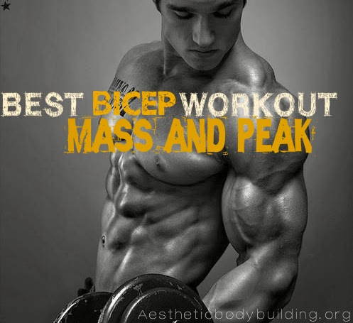 Top 5 Bicep exercises for peak and mass