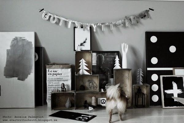 tavlor, tavla, svartvita prints, svarta och vita posters, canvastavlor, canvastavla, prints, artprints, kors, le sac en papier, pomeranian, valp, evighetskalender, svartvitt, svart, vitt, vita, blogg,