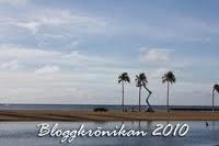 Bloggkrönikan 2010