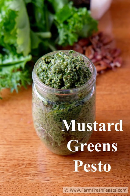 http://www.farmfreshfeasts.com/2015/09/mustard-greens-pesto-with-pecans-and.html