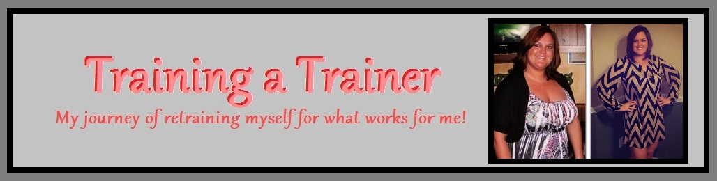 Training a Trainer