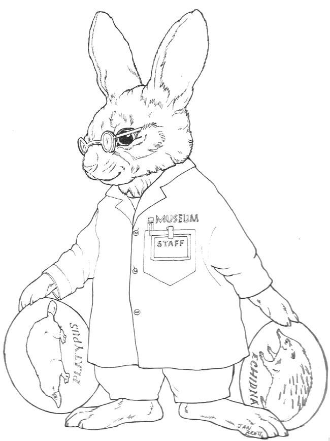 inkspired musings: bunny fever