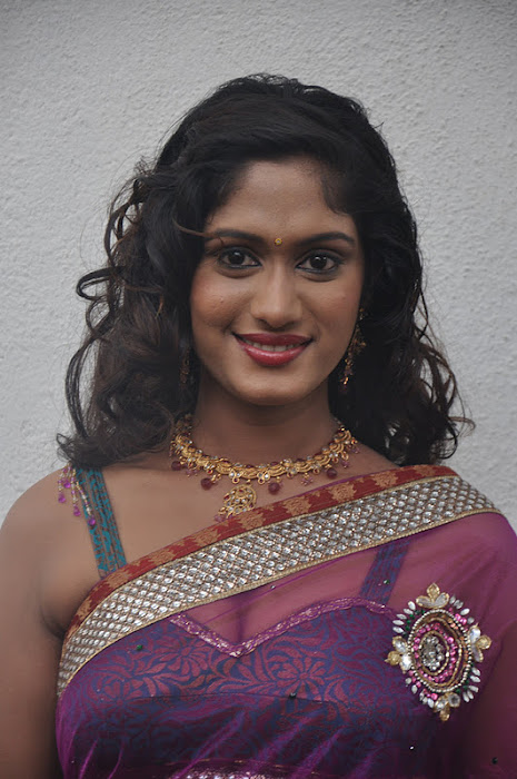 lavanya spicy transparent saree latest photos