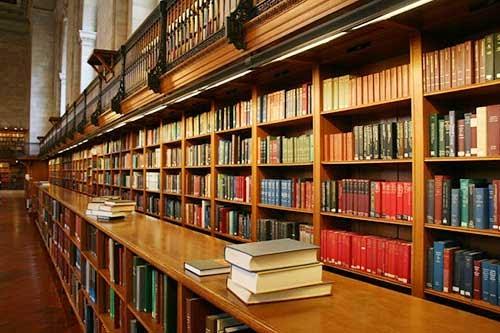 Program skripsi / tugas akhir: sistem informasi perpustakaan pada