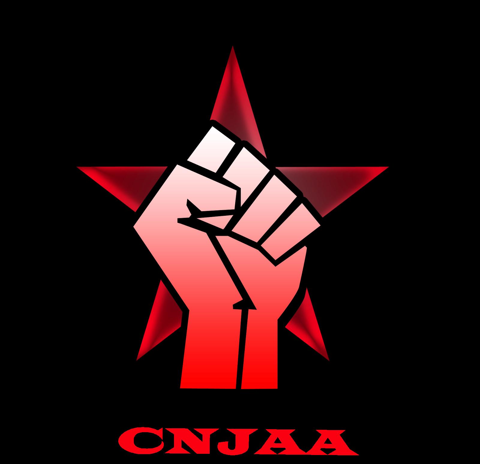 Logo Campamento Nacional de la Juventud Antifascista y Antiimperialista
