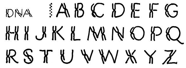 Margaret Shepherd: Calligraphy Blog: February 2013