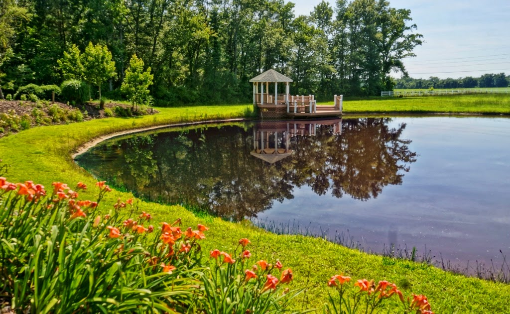 New bern nc new bern equestrian estate for sale for 1 acre pond design