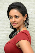 Pooja kumar new glam pics-thumbnail-1
