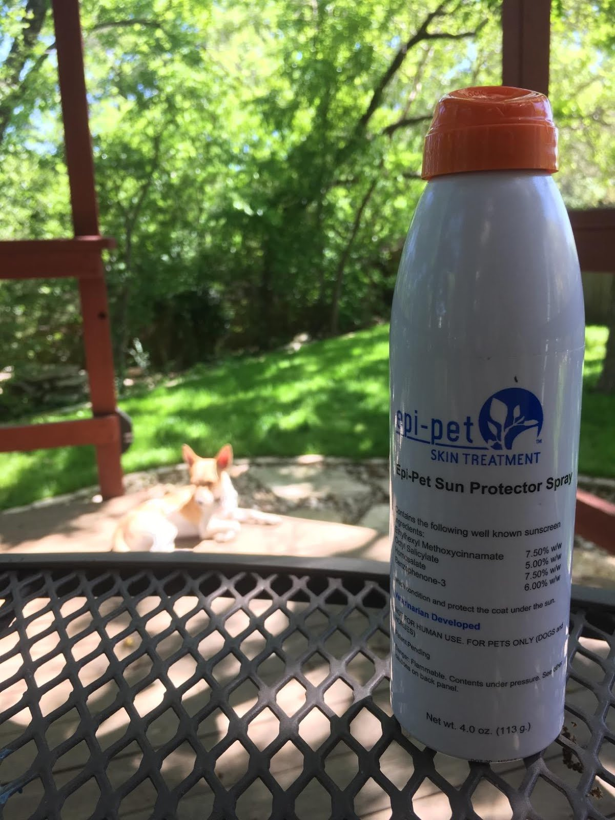 The only FDA approved SUN Screen for DOGS