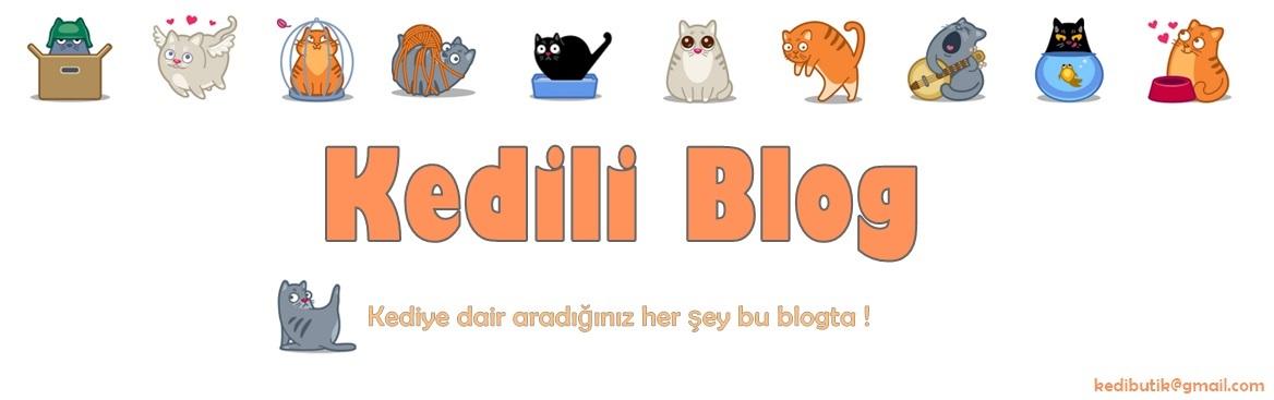 Kedili Blog