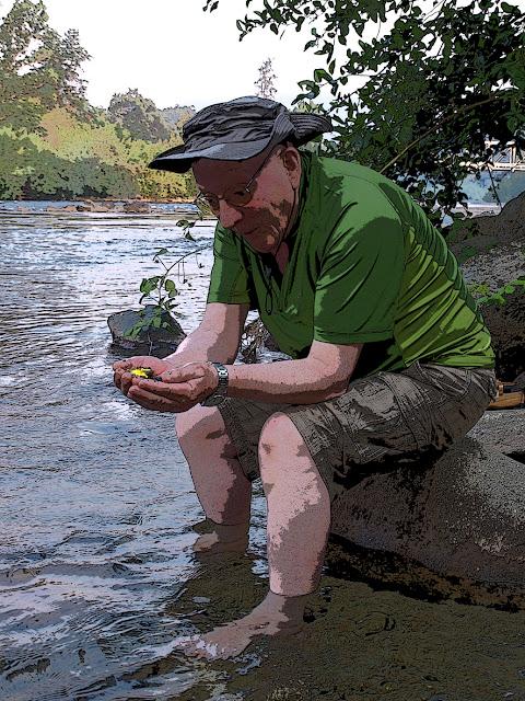 Descubriendo pepitas de oro en el American River