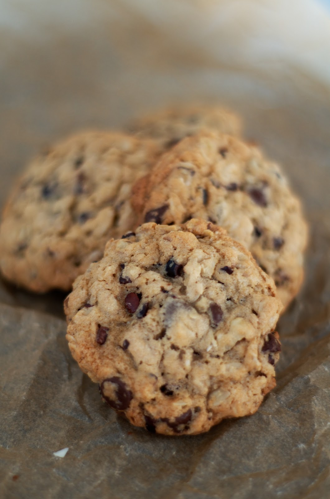 The Ginger Cook: Chocolate Chip Walnut Cocoa Nib Cherry ...