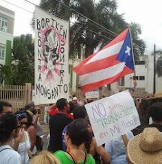 En Puerto Rico tampoco los queremos