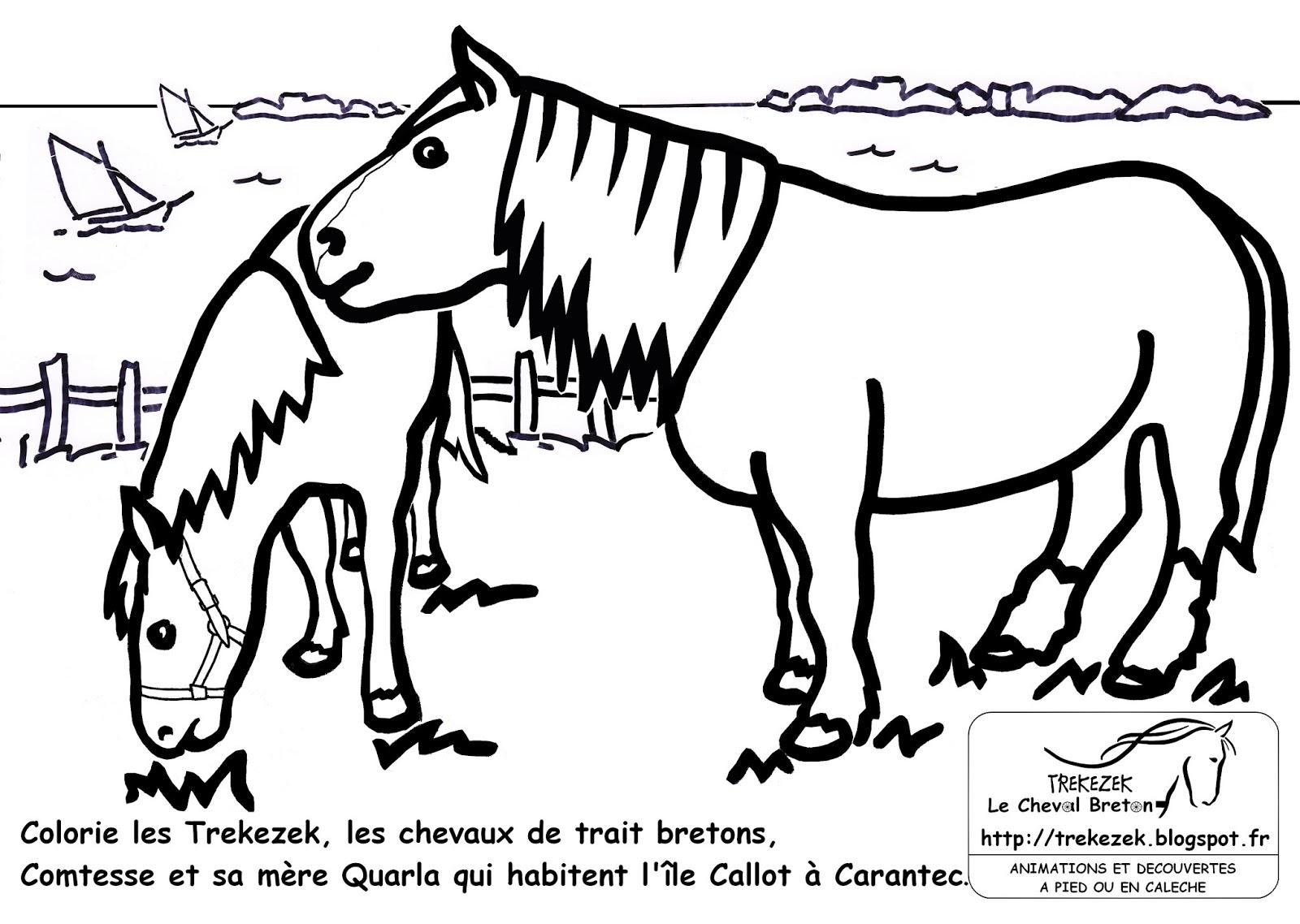 Bekannt jeux de coloriage de chevaux | Liberate PC99