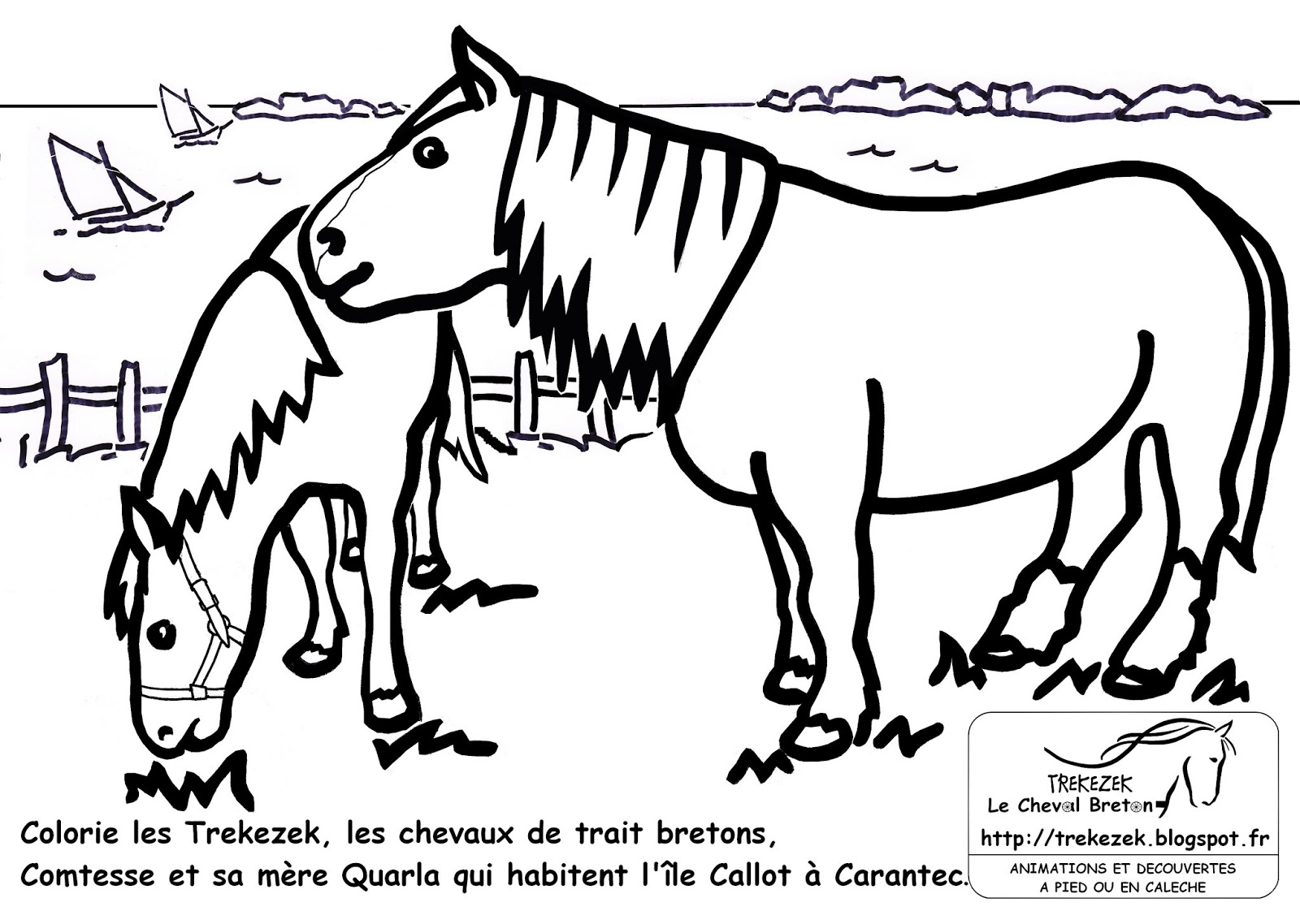 Coloriage Cheval Avec Caleche.Trekezek Le Cheval Breton Cheval Breton Dessin A Colorier Des