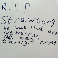 RIP Strawberry