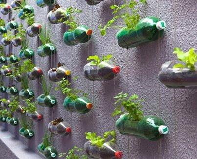 Pareti Con Bottiglie Di Vetro : Giocabosco creare con gnomi e fate riciclare bottiglie di plastica