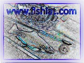 أسرار الصيد الخفية