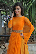 Loveleen Sasan photos at Ra Rammani launch-thumbnail-10