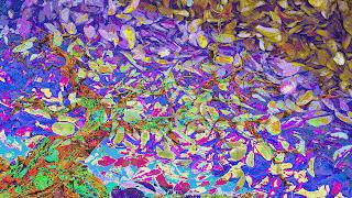 14 Arvore_despida_ sobre texturas de folhas_Oux_255