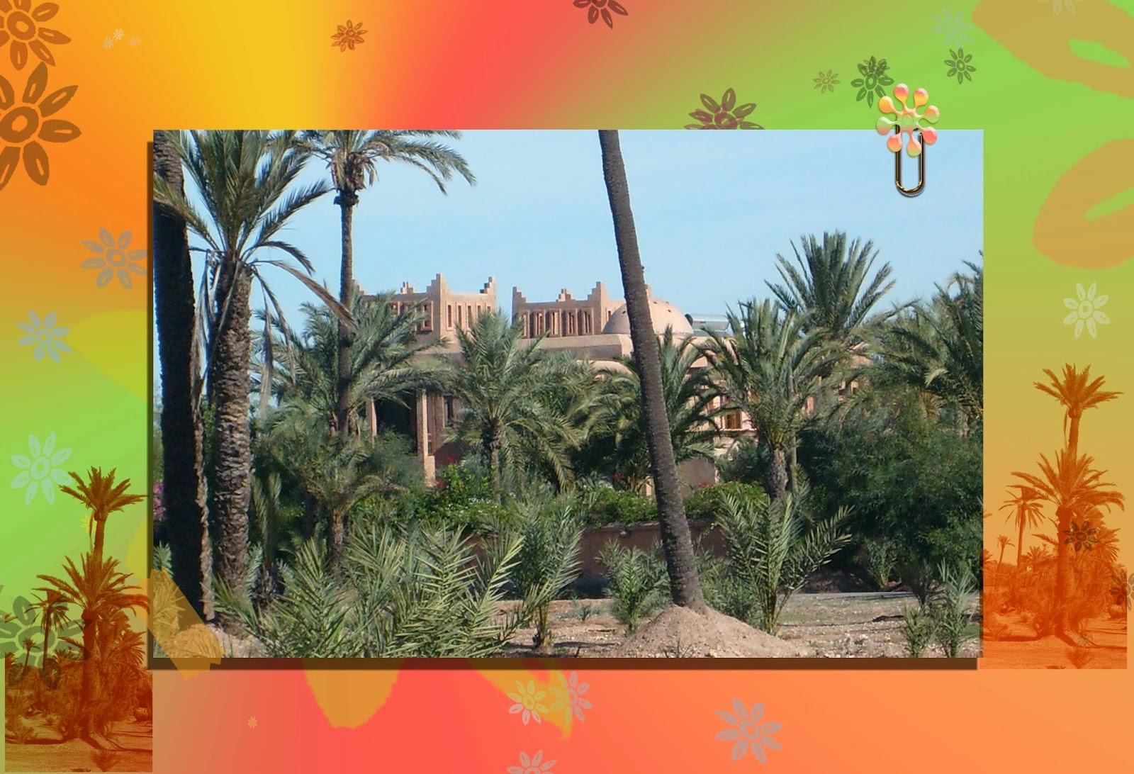 palmiers faire promenade