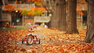 Triciclo en la calle